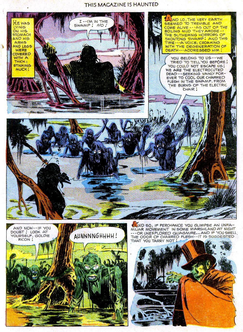 SkontongSwamp11